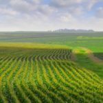 Into the Field: Food and Agricultural Law and Policy